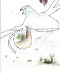 Disegno a penna e pastelli, Studio d'autore 2010, Pasquale Mastrogiacomo Acerno(SA)